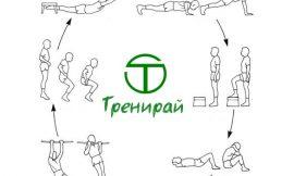 За Кръговата Тренировка Накратко
