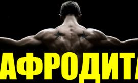 Комплекс Афродита – Фриилетикс (Freeletics) Тренировка