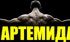 Комплекс Артемида – Фриилетикс (Freeletics) Тренировка